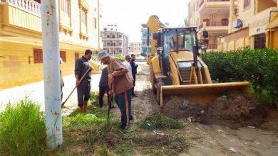 صورة رفع 2094 طن مخلفات وحملات نظافة مكثفة بمراكز ومدن كفر الشيخ