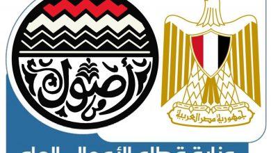 صورة وزارة قطاع الأعمال : إعداد مشروع  تطوير نادى غزل المحلة