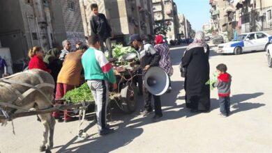 صورة مكبرات الصوت صداع في رأس المواطن الدسوقى