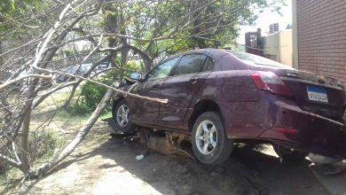 صورة نتيجة لسوء الطقس.. مصرع وإصابة 3 أشخاص إثر سقوط شجرة على سيارة بالغربية