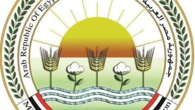 صورة بالانفوجراف ..ملخص بأهم انشطة وزارة الزراعة خلال الفترة من 5 حتى 11 فبراير