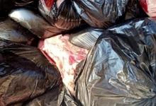 صورة ضبط 9 طن مصنعات دواجن وكبدة ولحوم 9 طن مصنعات دواجن وكبدة ولحوم مجمدة غير صالحة للاستخدام الادمي بالحوامدية والوراق