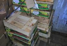 صورة حملات مكبرة على الأسواق ومصانع الأغذية لمواجهة بيع السلع المخالفة بالغربية