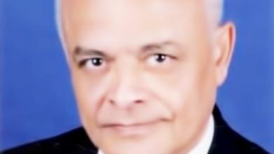 """صورة مستشار جامعة مصر للعلوم والتكنولوجيا عضواً بهيئة تحرير """"التوكسوكون"""" العالمية"""